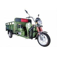 Грузовой электрический трицикл Rutrike Алтай 2000 60V1500W, зеленый